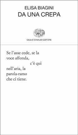 Elisa Biagini, Da una crepa (Einaudi, 2014)