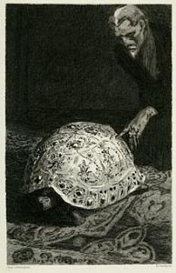 huysmans tartaruga
