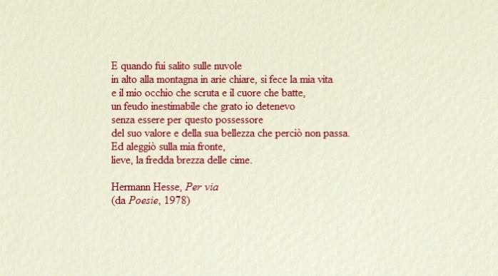 bustina chiara - Hesse
