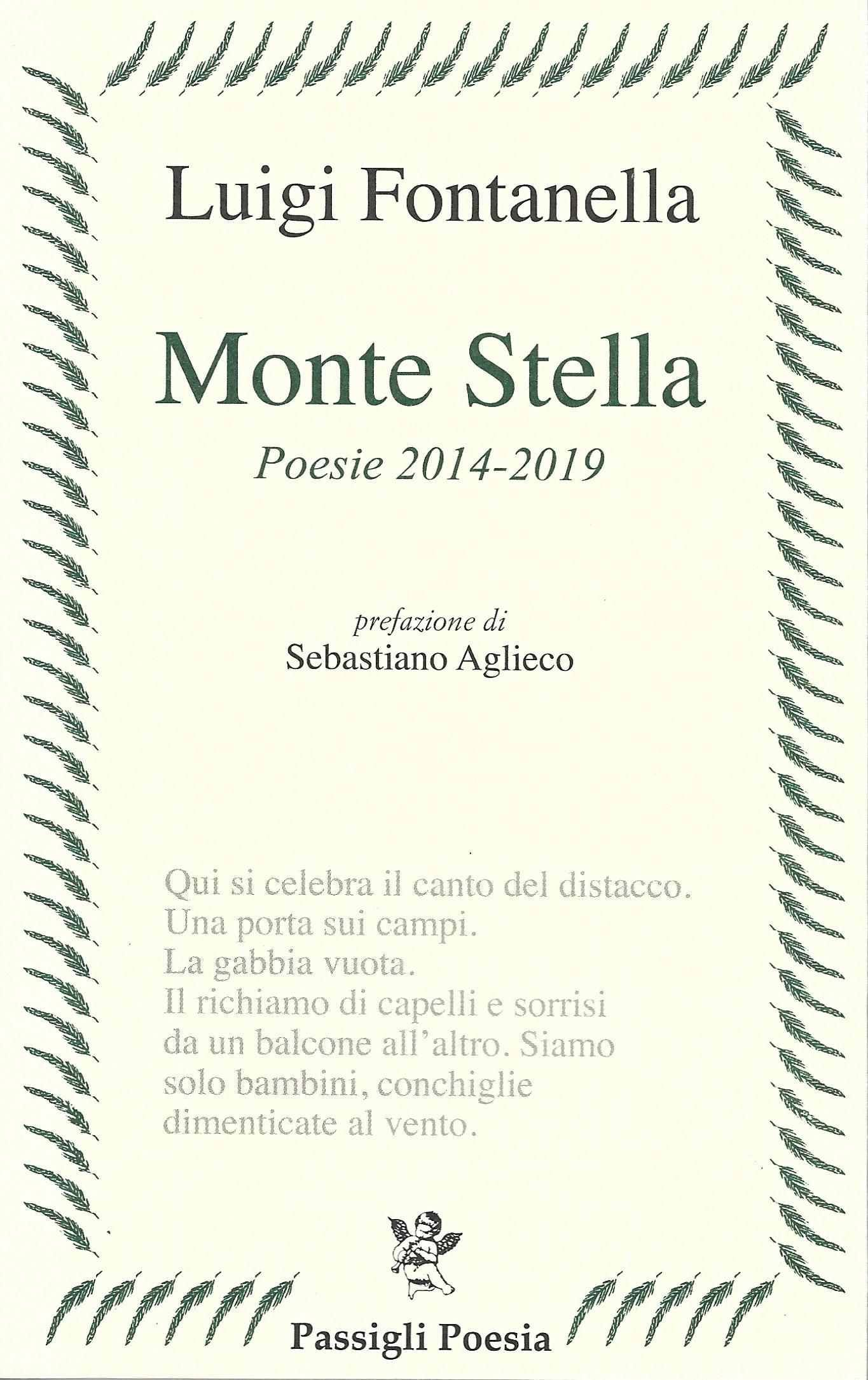Luigi Fontanella, Monte Stella (rec. di Claudia Manuela Turco) – Poetarum  Silva